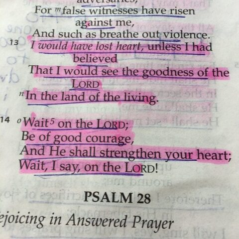 how do we not lose heart? Psalm 27
