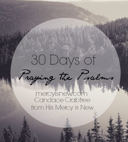 30 Days of Praying the Psalms @mercyisnew.com