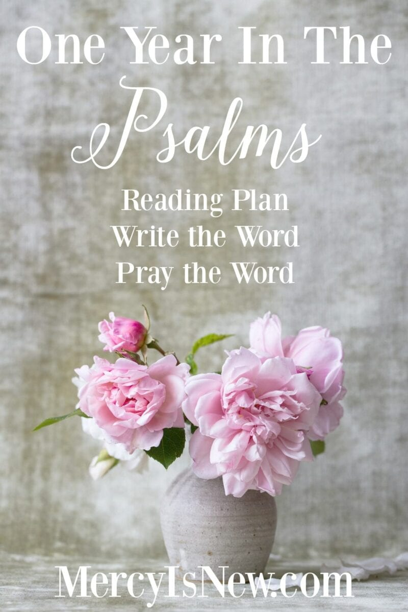 One Year in the Psalms
