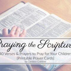 Prayer Cards Cover