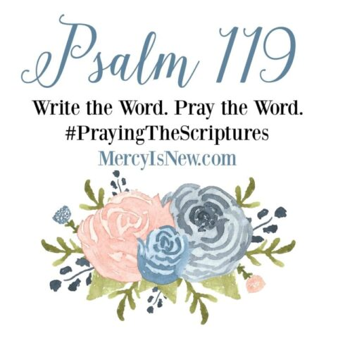 Psalm 119 Write the Word Pray the Word 2
