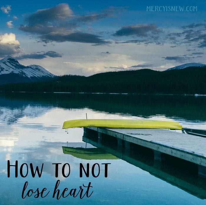 how to not lose heart