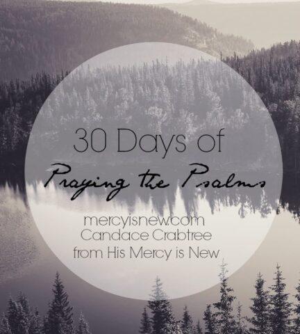 30 Days of Praying the Psalms @mercyisnew.com