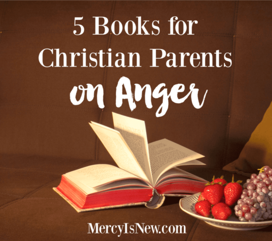 5 books for christian parents