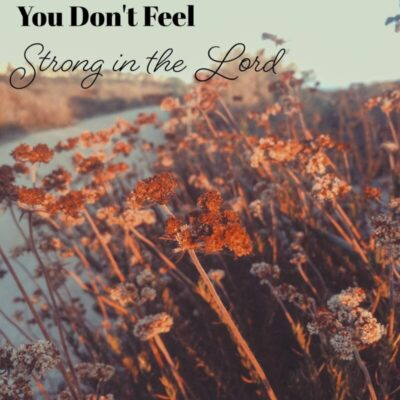 If You Don't Feel Strong in the Lord