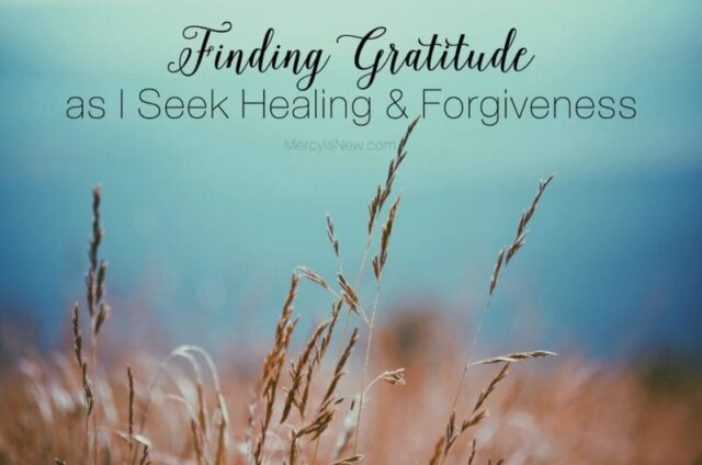 finding-gratitude-as-i-seek-healing-forgiveness