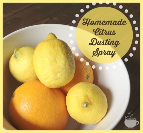Homemade Dusting Spray Recipe