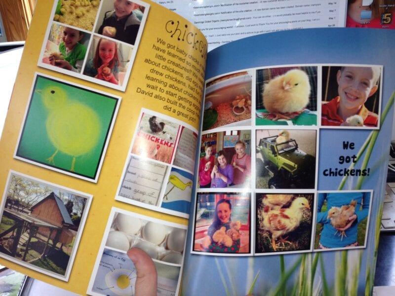 Picaboo Yearbooks {photo book review}