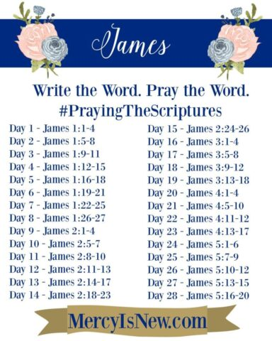 James Write the Word Pray the Word