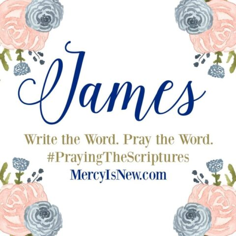 graphic about Printable Bible Study on James named James: Create the Term. Pray the Term.