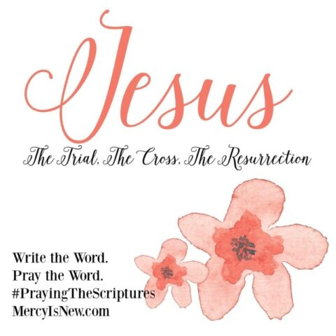 Jesus from the Book of Matthew: Write the Word. Pray the Word.