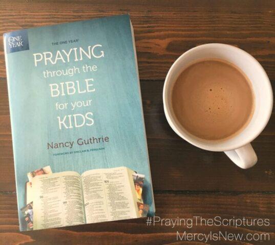 one-year-prayingthrough-the-bible