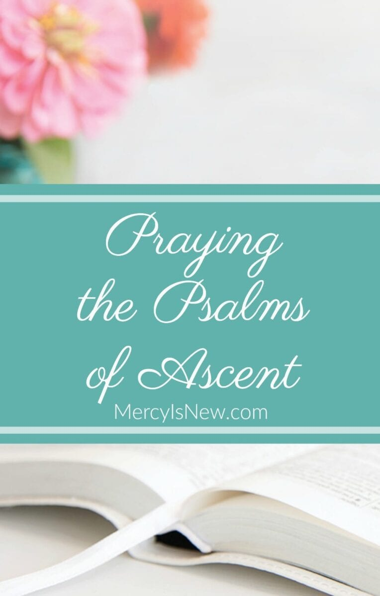 Praying the Psalms of Ascent