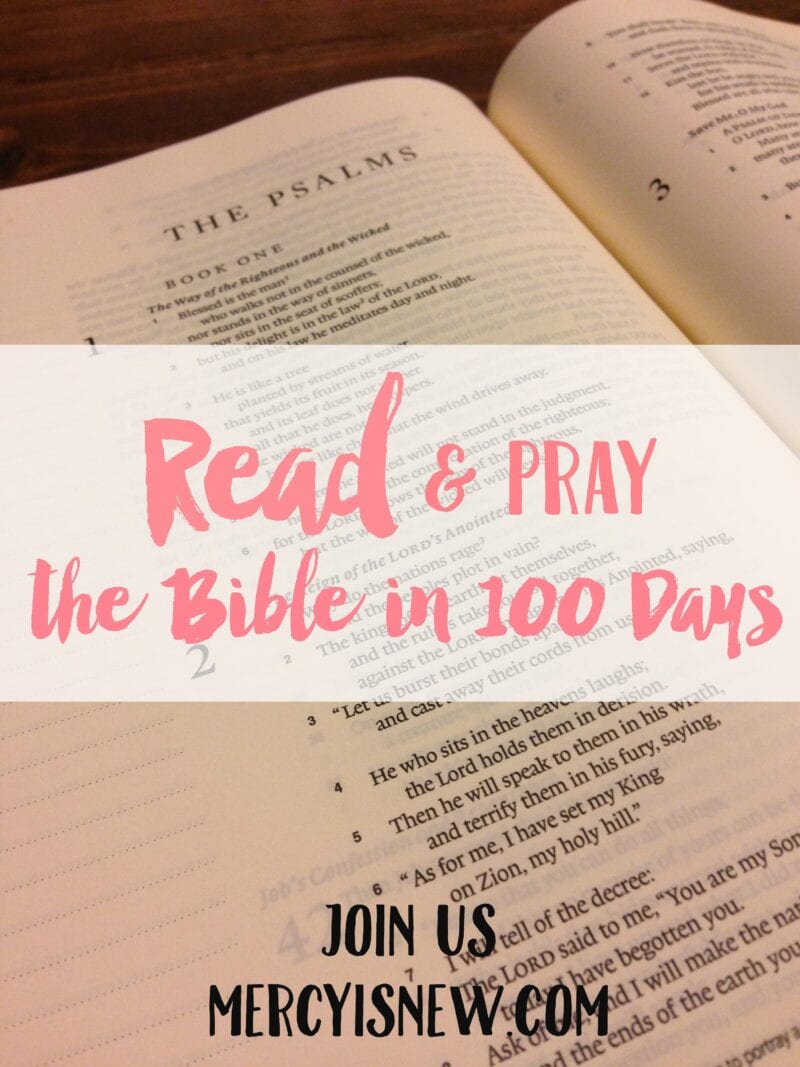 The Bible in 100 Days