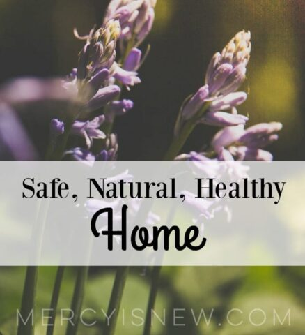 Safe Natural Healthy Home
