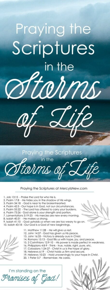 20 Verses to Pray During the Storms of Life