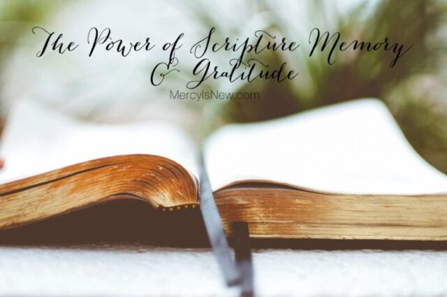 the-power-of-scripture-memory-and-gratitude