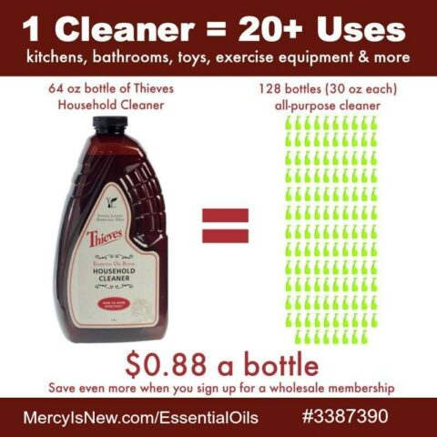 Thieves Cleaner Price Graphic