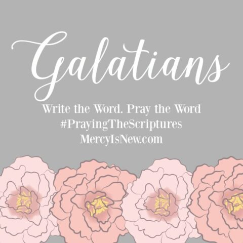 Write the Word Galatians square