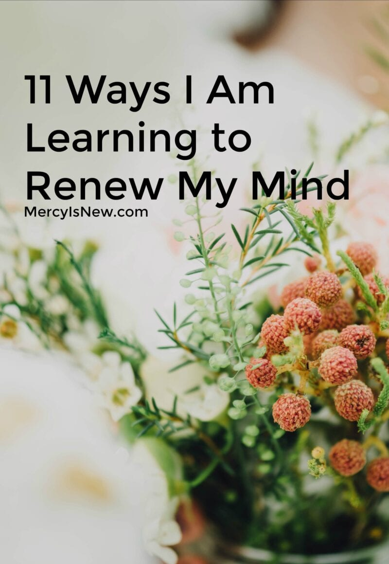 How I Am Learning to Renew My Mind